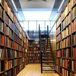 Библиотеки Солонешного